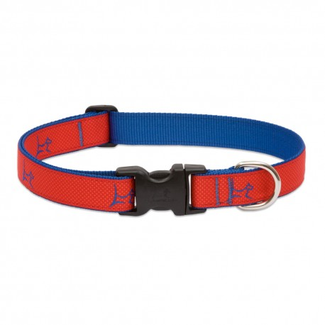 "Collar 1"" Derby Red - Envío Gratuito"