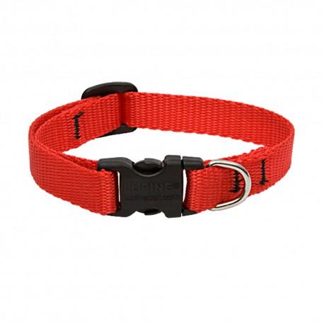 """Collar 1/2"""" Red - Envío Gratuito"""
