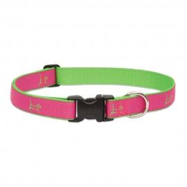 "Collar 1"" Bermuda Pink"