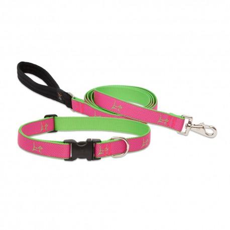 """Collar 1/2"""" Bermuda Pink - Envío Gratuito"""
