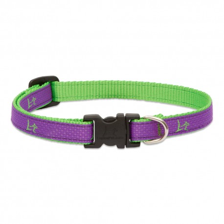 """Collar 1/2"""" Hampton Purple - Envío Gratuito"""