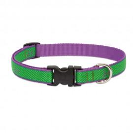 "Collar 3/4"" Augusta Green"