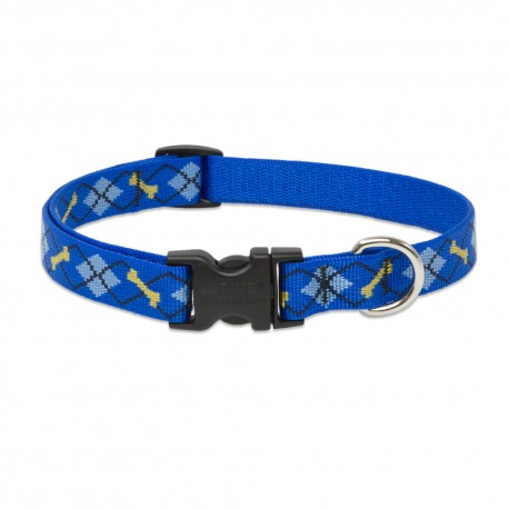 "Collar 3/4"" Dapper Dog - Envío Gratuito"