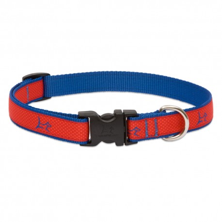 "Collar 3/4"" Derby Red - Envío Gratuito"