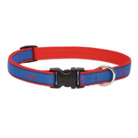 """Collar 3/4"""" Newport Blue - Envío Gratuito"""