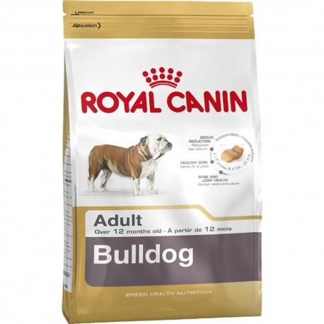 Bulldog Adult - Envío Gratuito