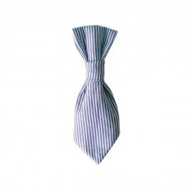 Corbata Clyde-Stripes