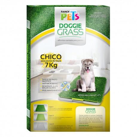 Doggie Grass Grande - Envío Gratuito