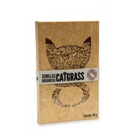 Semillas Catgrass Orgánico - Envío Gratuito