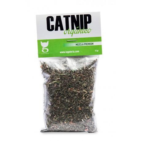 Catnip Orgánico - Envío Gratuito