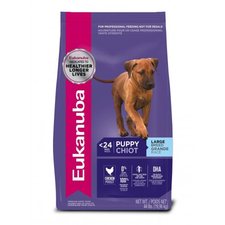 OUTLET: Puppy Large Breed - Envío Gratuito