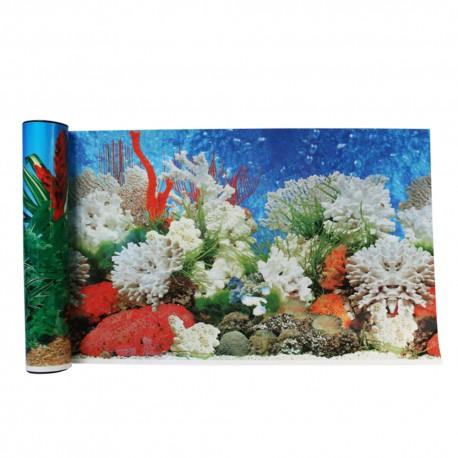 Respaldo Decorativo: Coral - Envío Gratuito
