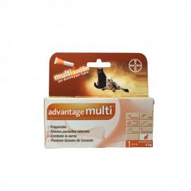 Advantage Multi® Gato